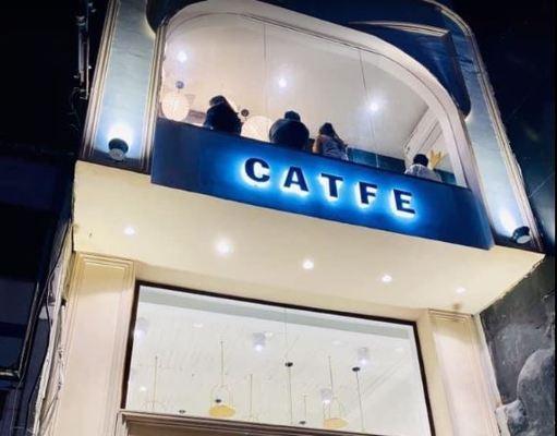 Quán cà phê CATFE Quận 1